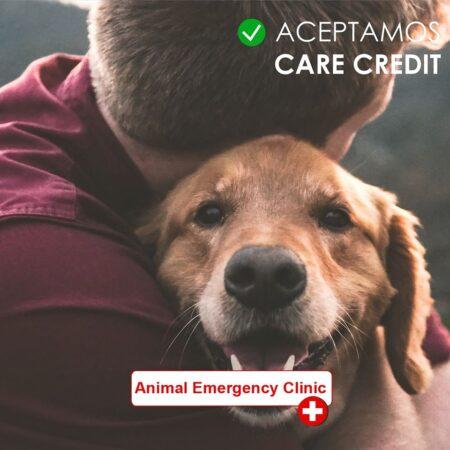 Ahora contamos con Care Credit